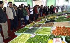 2017年第八届海南屯昌农民博览会交易金额达13.8亿元