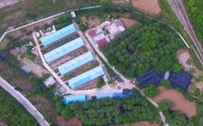 甘肃苍坪:自建家庭农场解决贫困户就业难题