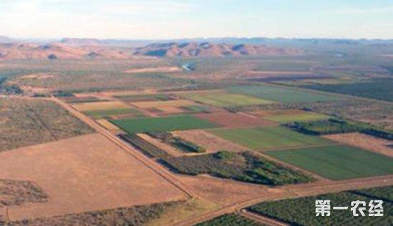 农业发展图片