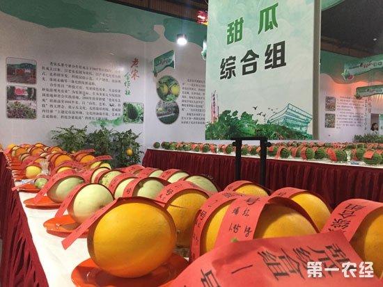 """第29届北京大兴西瓜节""""艺苑杯""""全国西甜瓜擂台赛"""