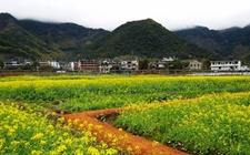 山西:一季度贫困地区农村居民收入达2097元