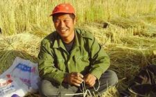 重庆永川:让农业项目财政补助资金惠及农村农民