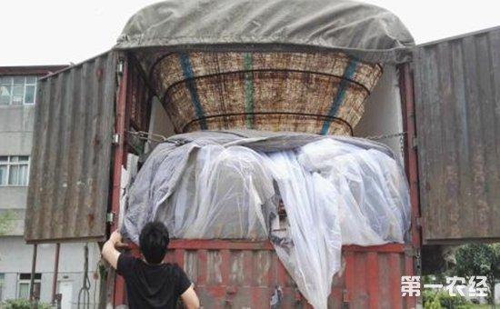 云南玉溪:查获一批走私冻品  共计有冰冻鸡爪19.27吨