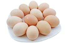 2017年5月27日全国各地区最新鸡蛋价格走势分析