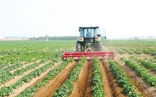 广西荔浦:气象服务交流群搭建农民信息交流新平台