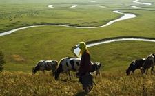 青海:健全完善培训制度体系 培育新型职业农牧民