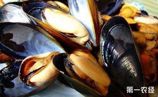 漳州漳浦:受海洋赤潮影响  36人因食用青蛤导致食物中毒