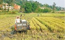安徽:支持工商资本进入农村生活性服务业