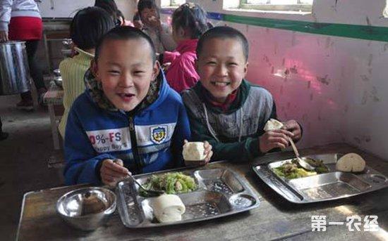 俄罗斯高度肯定赞扬中国营养餐计划