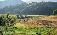<b>2017年国家农业综合开发产业化发展项目申报事宜</b>