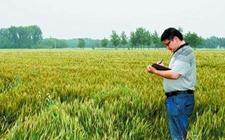 山东青岛:七部门联合制定政策性农业保险