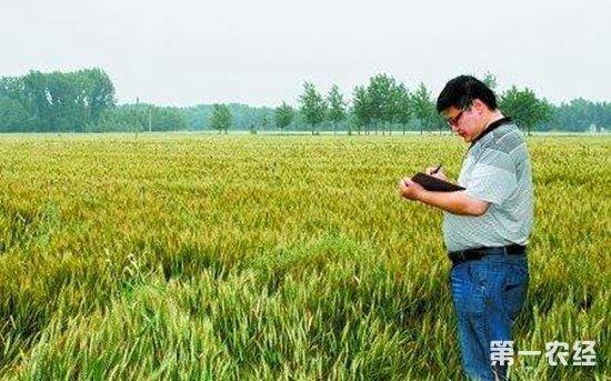 青岛七部门联合制定政策性农业保险