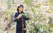 浙江:启动新农人行动计划培育农业创业创新领军人才
