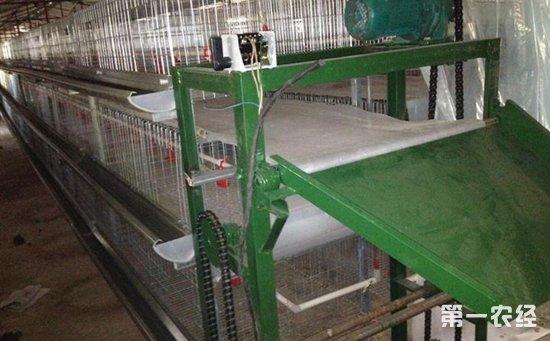 养鸡场清粪养鸡设备:三层传送带清粪机的操作原理及七大性能