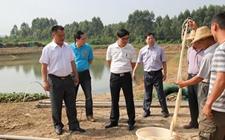 广东:全面延伸细化河长制 建立完善水域管理机制