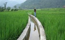 扎实推进农业水价综合改革 加快完善节水政策体系建设