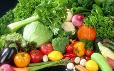 """湖北天门:五大农业""""+""""模式 创造蔬菜产业新动能"""