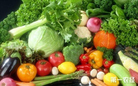 蔬菜图片素材库