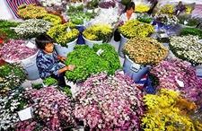 山东沂源:发展特色农业助力新型农业发展