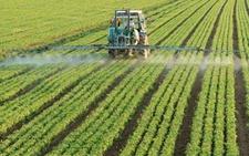 陕西:春播2445万亩农作物已经开出丰收之果