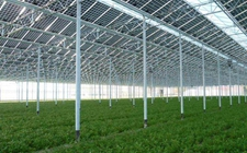 光伏农业+温室大棚发展模式推动精准农业发展助力农民增收