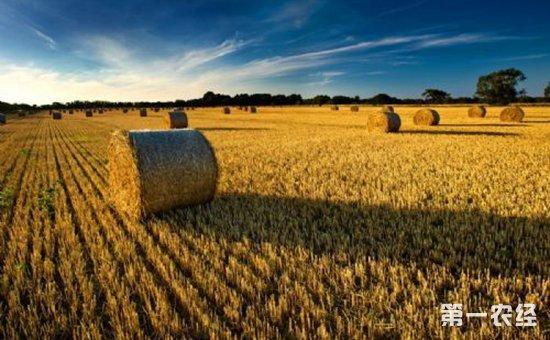 """领农业补贴的""""一卡通""""该怎么办理?各项补贴怎么领?"""