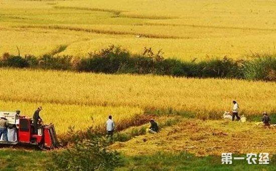有偿退地的条件是什么?如何解决退地农民的后顾之忧?