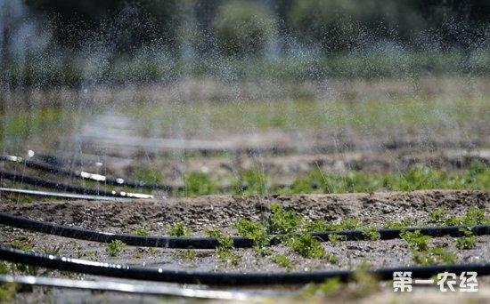 国家发改委:高效节水灌溉项目区全部纳入农业水价综合改革试点范围