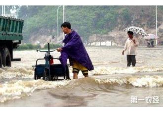 广西暴雨29个县洪涝 22万多人受灾2人死亡