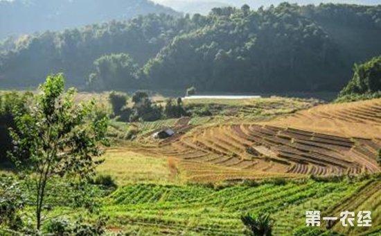 关系6亿农民的生活,你的家乡将发生怎样的变化?