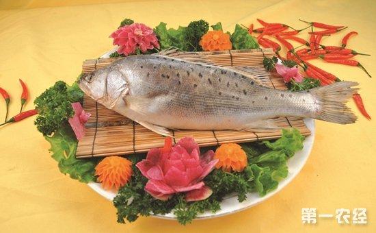 新疆:深海鲈鱼检出禁药孔雀石绿  2批次不合格食品被通报