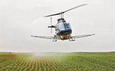 <b>亳州杨领年使用现代化科学种植粮食 实现年入百万</b>