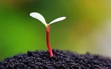 河南:实施农业用土清洁计划保护土壤可持续发展