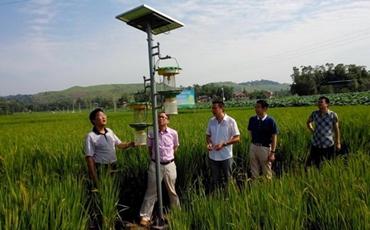 陕西甘肃全面推动农业信息化发展 促进农业生产