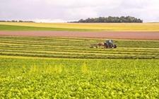 农业部:开展农业全产业链开发创新示范工作 探索农业农村发展新模式