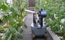农业科技产业园不能给机器人戴草帽