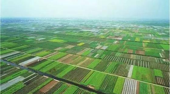 农财两部全力推进国家现代农业产业园创建