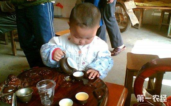 儿童为什么不能喝茶 小孩几岁才可以喝茶