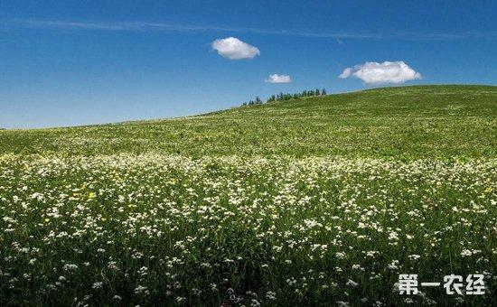 新疆阿克苏:扎实推进农业供给侧结构性改革  培育农业农村发展新动能