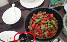 海口:干锅肥肠里竟吃出了蛆虫 涉事店家环境脏乱被责令整改