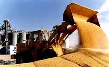 农业部专家:粮价托市政策须适应市场 补贴、保险、信贷政策协同推进