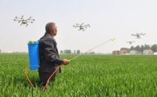 河北:农业化肥使用已经达到负增长