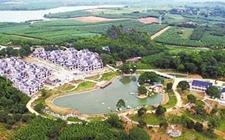 广西贺州:建设农业示范园已经达到71个