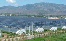 河南焦作:设施农业+光伏产业促进现代农业高效创收