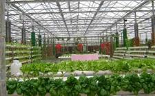 山西:组建功能农业研究院 培养农业专门人才