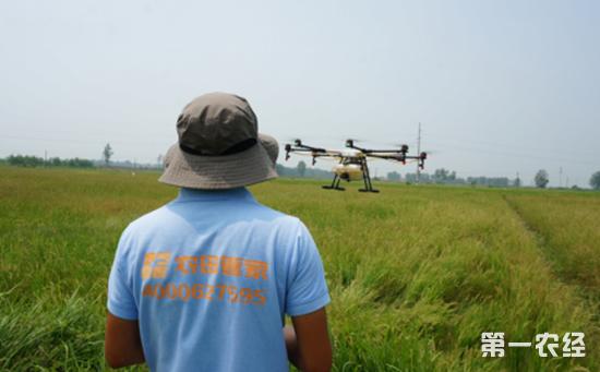 创业创新为农业农村发展注入新动能