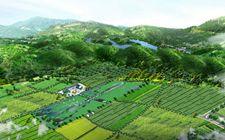 河北承德:绿色生态循环农业模式成农业链条延伸新样本