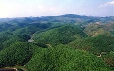 国家林业局将开展森林特色小镇建设试点工作