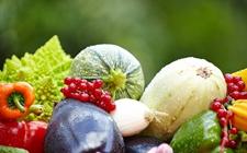 湖南:从源头把好农产品质量安全关