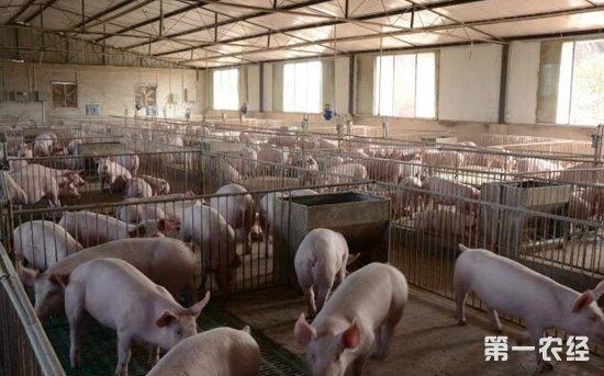 农业部推进畜禽粪污资源化利用